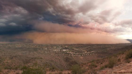 Phoenix Dust Storm wallpaper