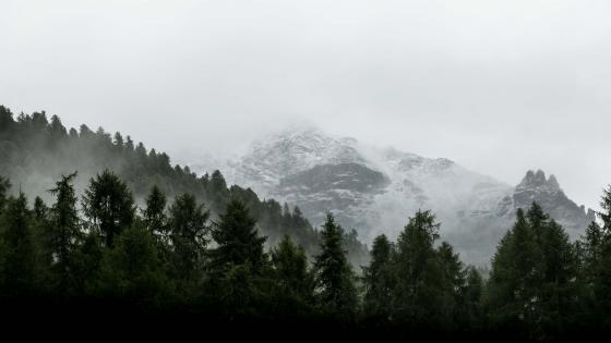 On the to Misty Mountains  wallpaper