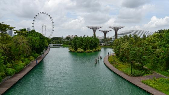 Gardens by the Bay wallpaper