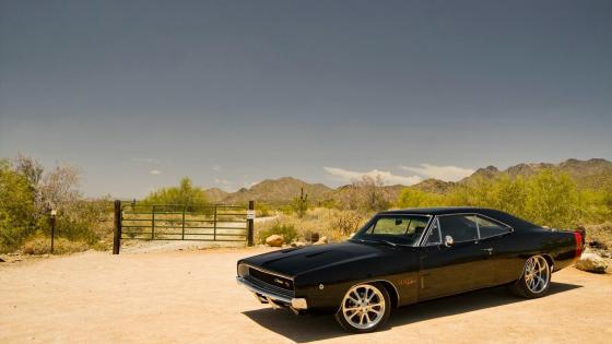 1968 Dodge Charger wallpaper