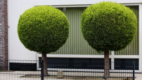 Urban Landscaping wallpaper