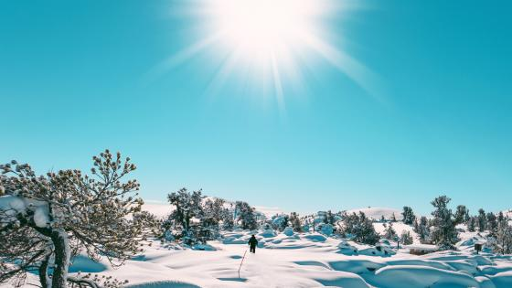 Sun Rise in Snowing Winter wallpaper