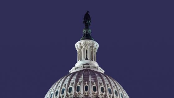 Statue of Freedom on top of the United States Capitol wallpaper