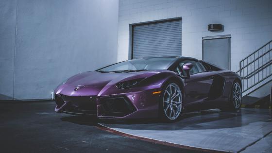 Purple  Lamborghini wallpaper