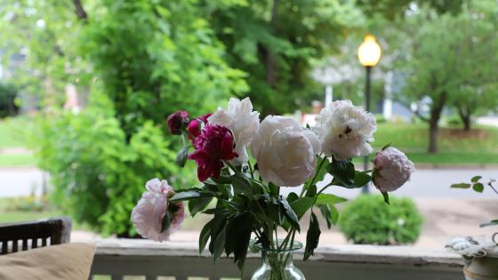 front porch peonies wallpaper