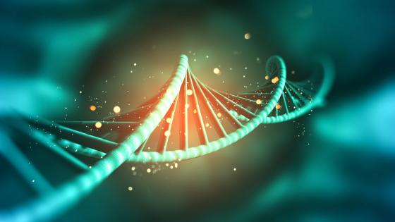 3d Strang dna wallpaper
