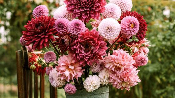 Spring Flowers Bouquet wallpaper
