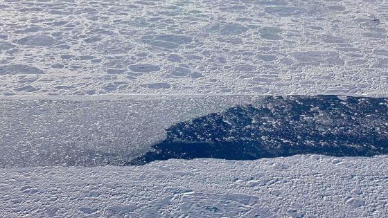 2019 Arctic Sea Ice Minimum Is Second Lowest wallpaper