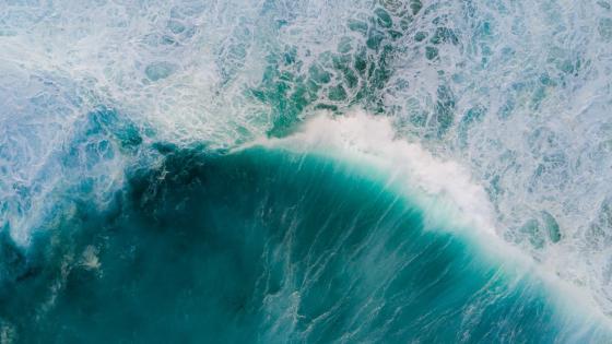 大海 wallpaper