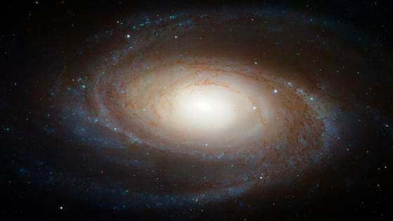 Hubble Photographs Grand Design Spiral Galaxy M81 wallpaper