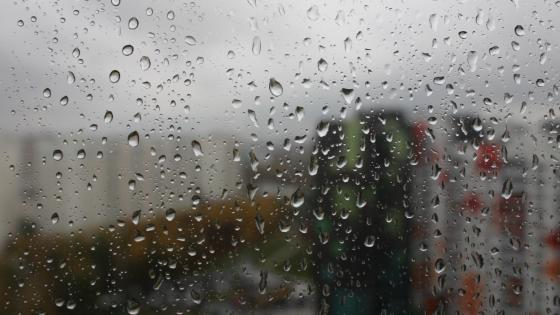 дождь wallpaper
