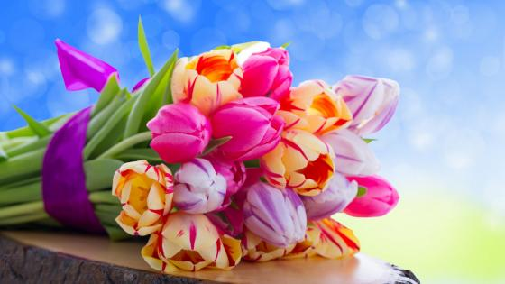 Colourful flowers wallpaper