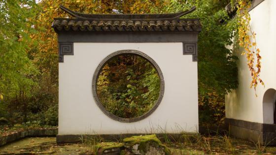 Chinesischer Garten wallpaper