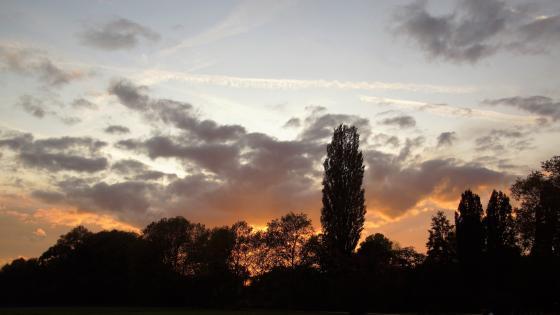 Sonnenuntergang im Herbst wallpaper
