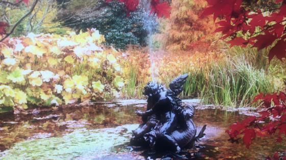 Benmore Botanic Garden_fountain in autumn wallpaper