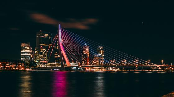 Erasmus Bridge in Rotterdam at night wallpaper
