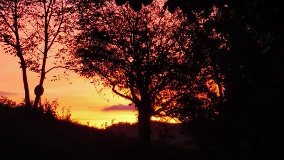 Sunset!  wallpaper