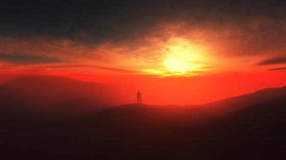 Alone in the sunset wallpaper