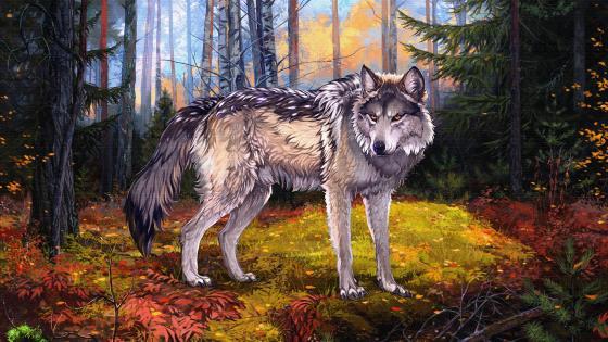 Lupus Tundrarum Painting Art wallpaper