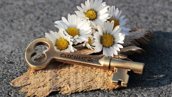 Key of dreams and daisy flowers wallpaper