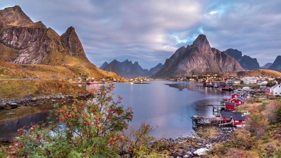 Norway fjords (Lofoten Islands) wallpaper
