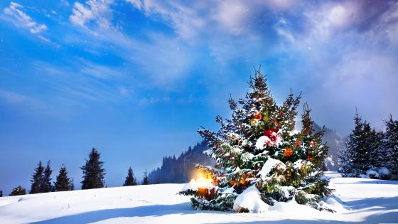 Outside decorated Christmas tree wallpaper