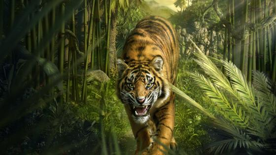 Tiger in the jungle wallpaper