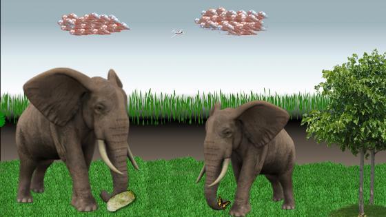 Elephant in the bush wallpaper