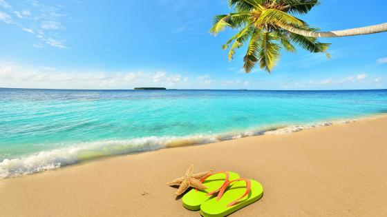 Flip flop on the beach wallpaper