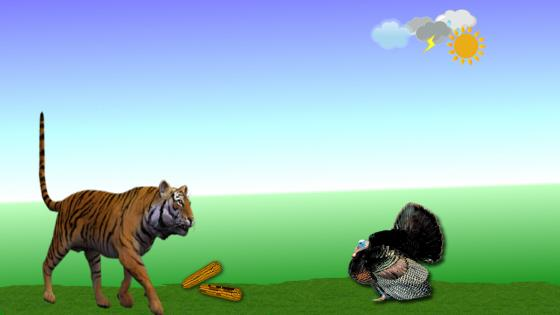 The tiger and the turkey wallpaper