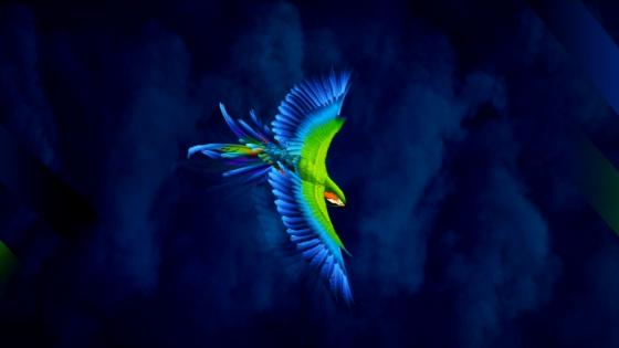 Blue green bird in blue sky wallpaper