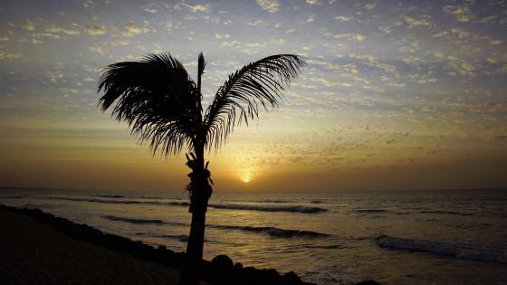 Sunset on the Atlantic wallpaper