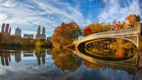 Bow Bridge wallpaper
