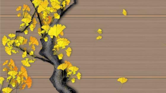 ginkgo biloba yellow leaves wallpaper