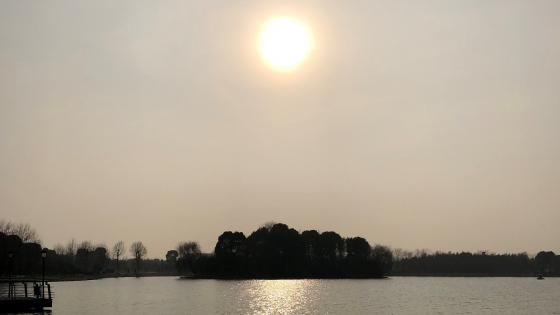 Lake and the sun wallpaper