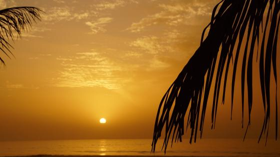 Sunset by the sea in Gambia wallpaper