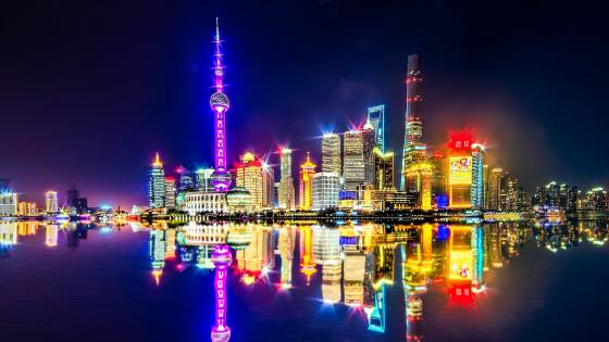 Stunning Shanghai Skyline at Night wallpaper