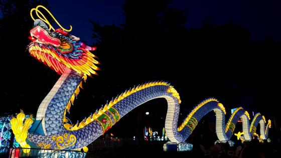 Chinese lantern festival wallpaper