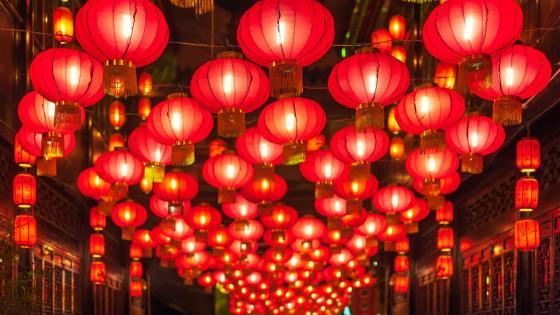 Chinese new year lanterns wallpaper