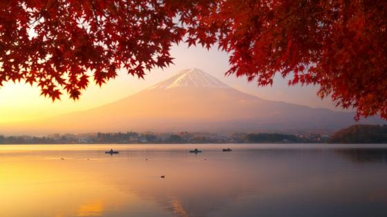 Red mapple leaves and Mount Fuji wallpaper