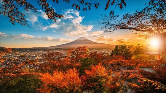 Mount Fuji at fall wallpaper