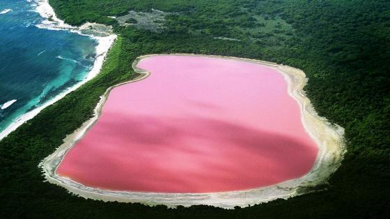 Natural Pink Lake Retba, Senegal wallpaper