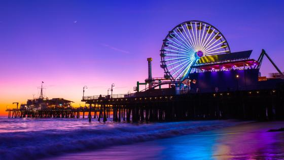 Santa Monica pier at night wallpaper