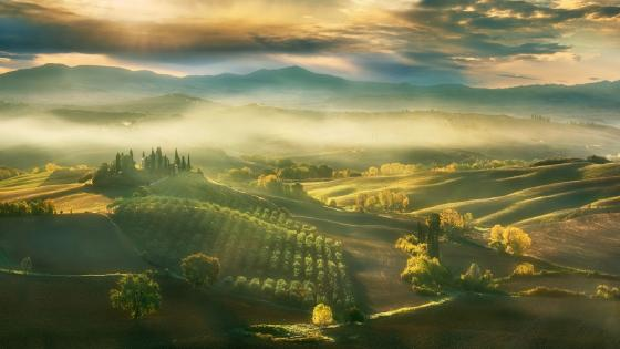 Tuscany hills wallpaper