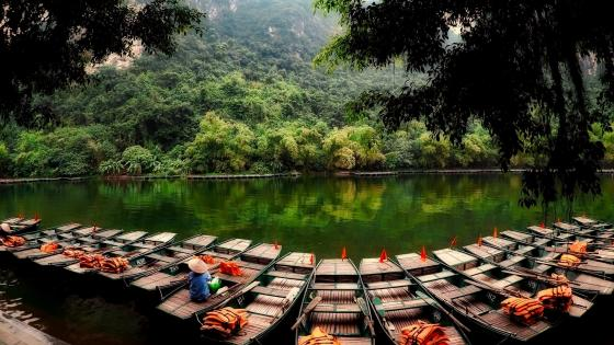 Boat tour in Vietnam wallpaper