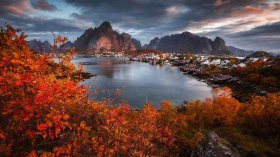 Reine at fall wallpaper