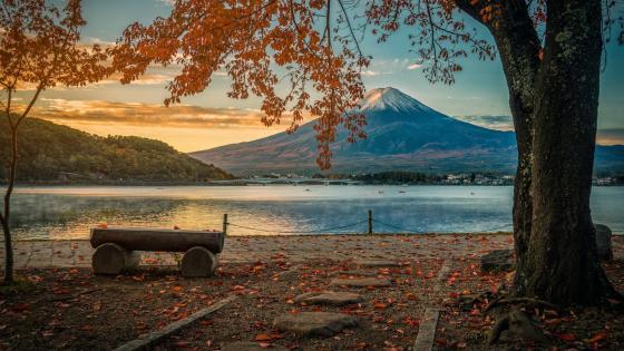 Mt. Fuji at fall wallpaper