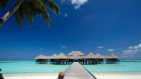 Tropical overwater bungalows wallpaper
