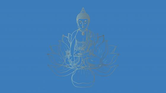 Buddha sitting on a lotus wallpaper