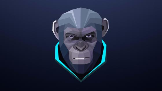 Low-poly Monkey wallpaper